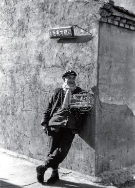 北京胡同里玩鸟的老人